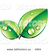 3d Vector Clipart of a Pre-Made Logo of Organic Green Leaves Wet with Dew on White by Beboy