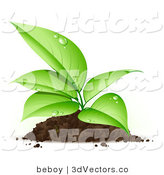 3d Vector Clipart of a Sprouting Organic Seedling Plant with Dew on Its Green Leaves, Growing from a Pile of Dirt by Beboy