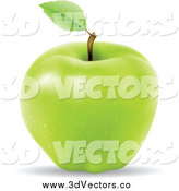 Vector Clipart of a 3d Green Apple by Cidepix
