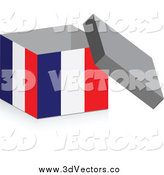 Vector Clipart of a 3d Open French Flag Box by Andrei Marincas