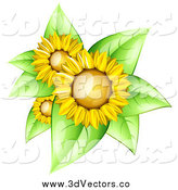 Vector Clipart of a 3d Sunflowers with Bright Green Leaves by Oligo