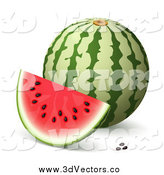 Vector Clipart of a 3d Watermelon, Slice and Seeds with Shading by Oligo