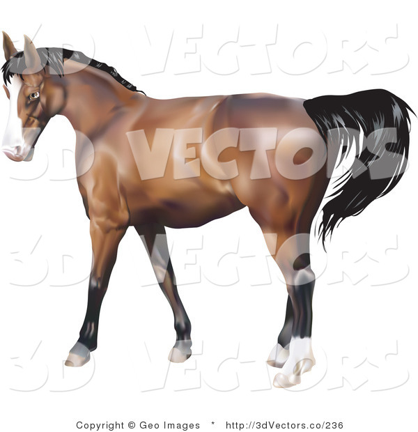 3d Vector Clipart of a Brown Horse