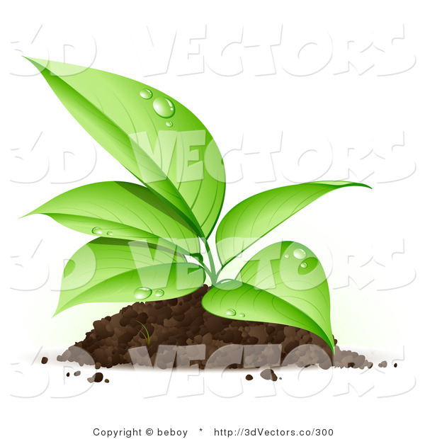3d Vector Clipart of a Sprouting Organic Seedling Plant with Dew on Its Green Leaves, Growing from a Pile of Dirt