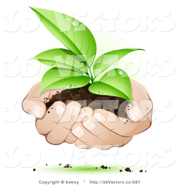 3d Vector Clipart of White Human Hands Supporting a Sprouting Green Plant in Dirt, Symbolizing Support