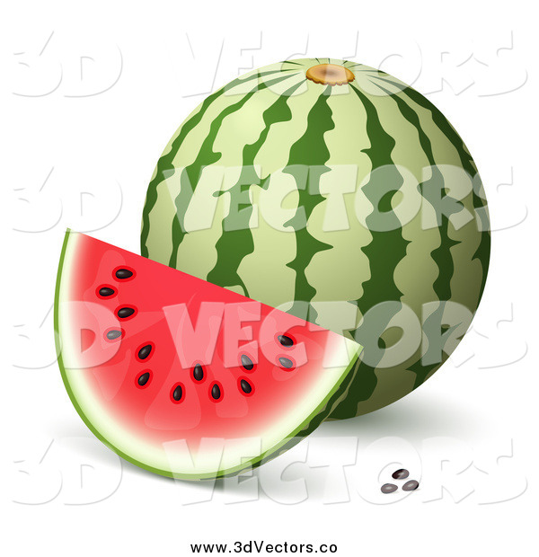Download watermelon d willz | CHIN-TRAGIC.CF